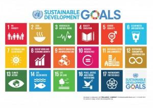 FNS mål